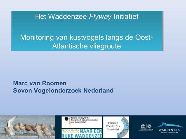 Het Waddenzee Flyway Initiatief Het Waddenzee Flyway Initiatief Monitoring van kustvogels langs de OostMonitoring van kust...