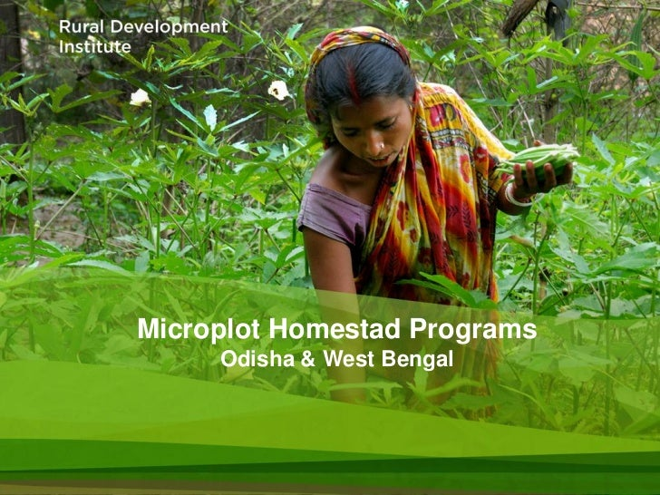 Microplot Homestad Programs     Odisha & West Bengal