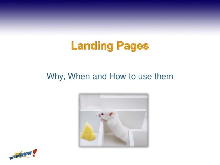 Landing Pages<br />Why, When and How to use them<br />