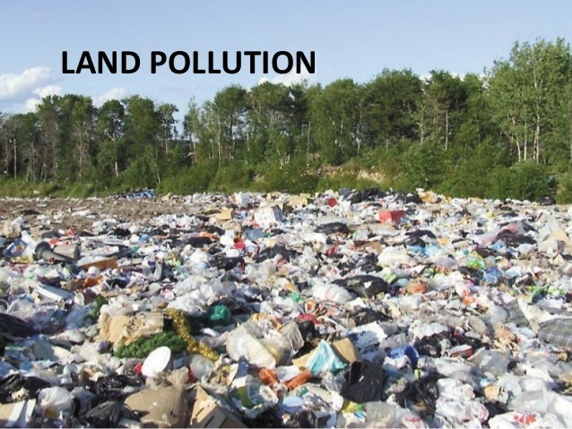 Pollution problems in india essay