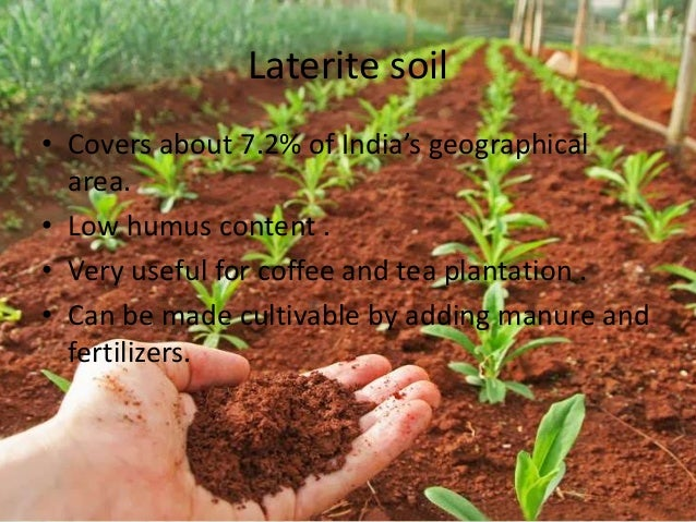 Pics for laterite soil for Land and soil resources definition