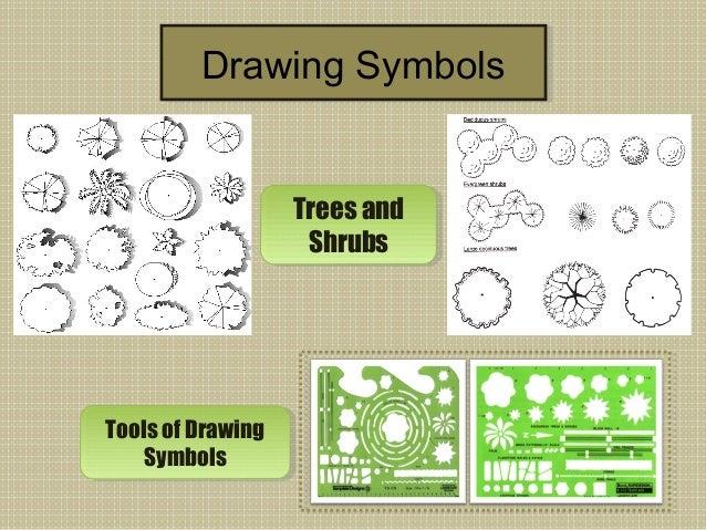 Architecture Tree Symbol Symbols Trees And Shrubs