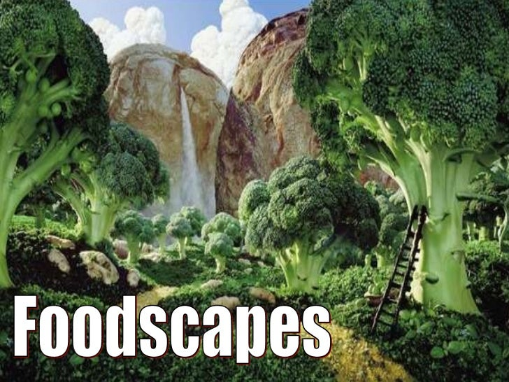 Landscapes With Food
