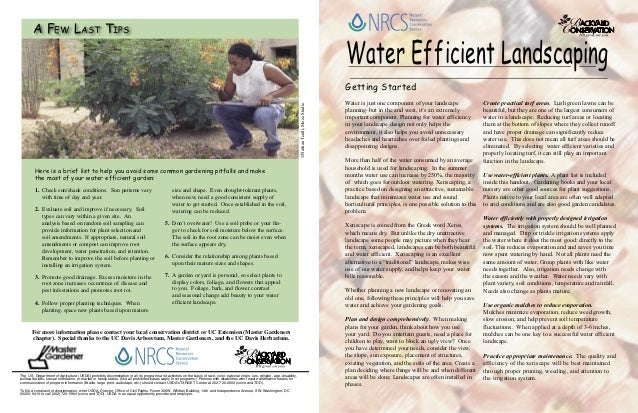 Water Efficient Landscaping: Backyard Conservation