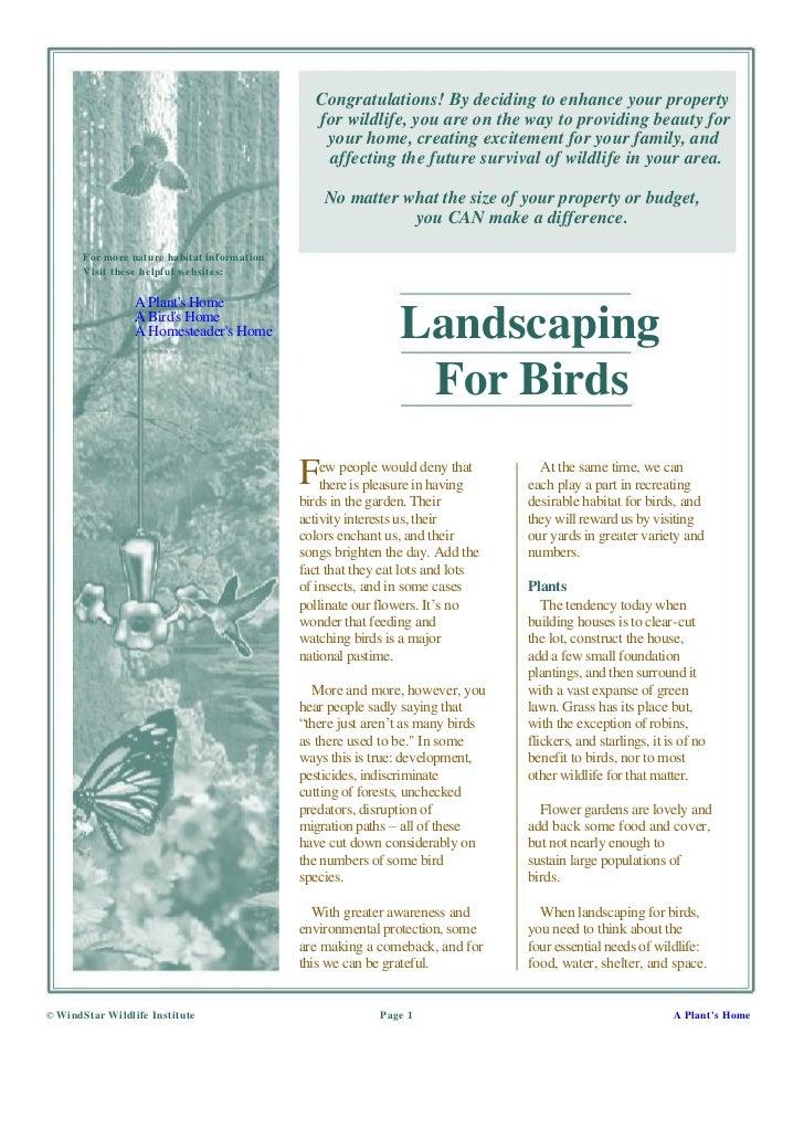 Landscaping For Birds