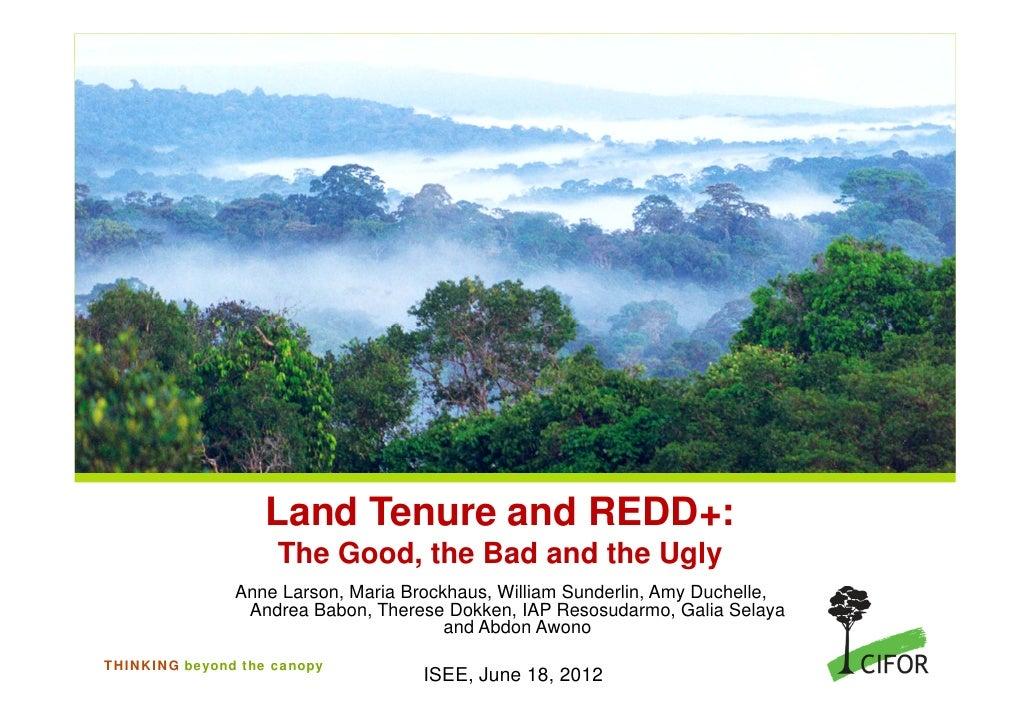 Land tenure and redd+ good bad ugly