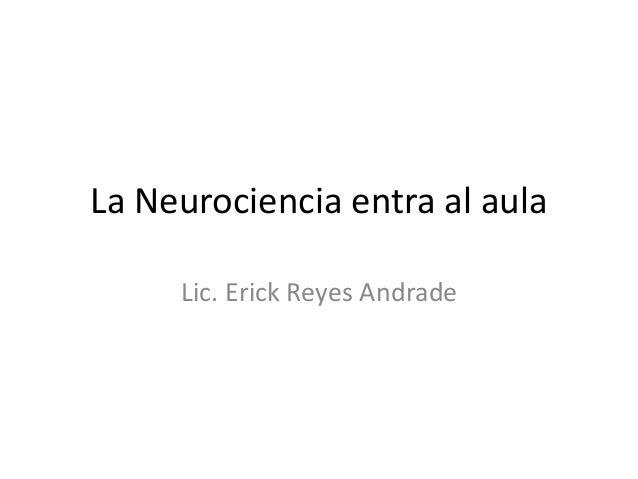 La neurociencia entra al aula