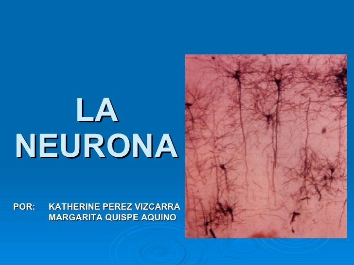 LA NEURONA POR:  KATHERINE PEREZ VIZCARRA MARGARITA QUISPE AQUINO