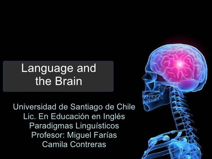 Language and the Brain Universidad de Santiago de Chile Lic. En Educación en Inglés Paradigmas Linguísticos Profesor: Migu...