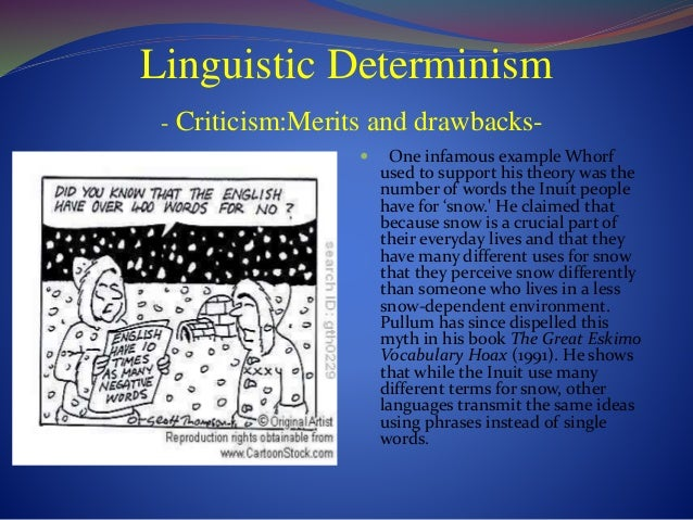 Write my linguistic determinism hypothesis