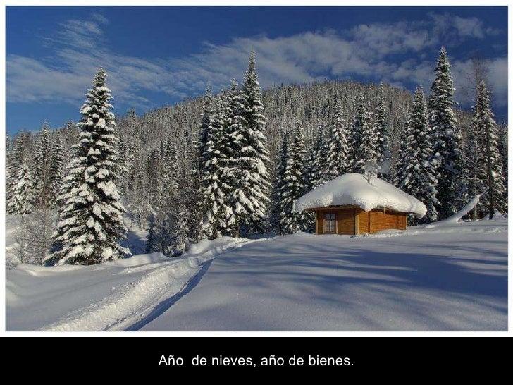 ===Refranes los hay para todo=== - Página 2 La-nieve-24-728