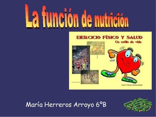 María Herreros Arroyo 6ºB