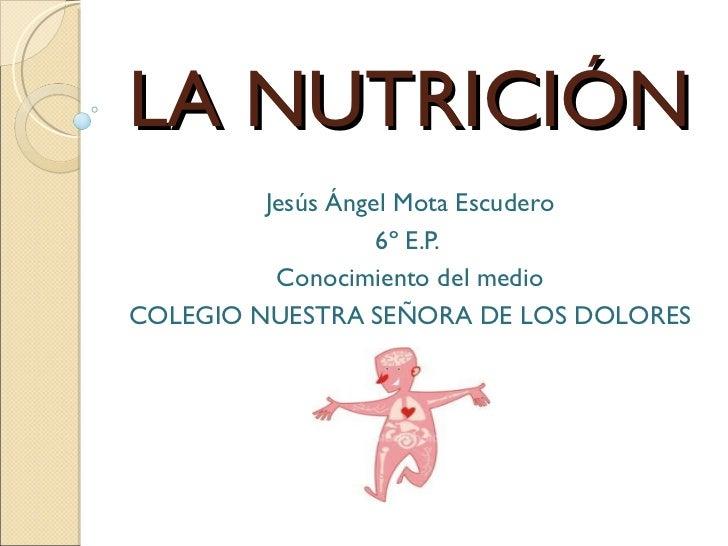 LA NUTRICIÓN         Jesús Ángel Mota Escudero                   6º E.P.          Conocimiento del medioCOLEGIO NUESTRA SE...