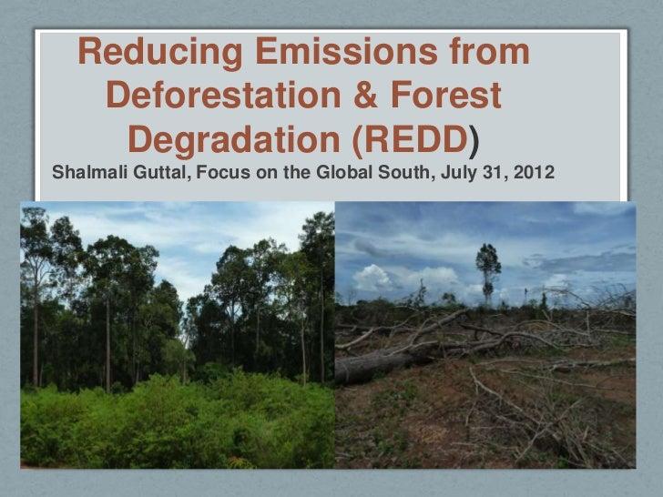 Reducing Emissions from   Deforestation & Forest    Degradation (REDD)Shalmali Guttal, Focus on the Global South, July 31,...