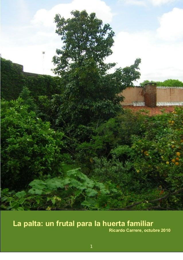 La palta: un frutal para la huerta familiar Ricardo Carrere, octubre 2010 1