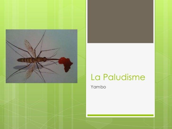La PaludismeYambo