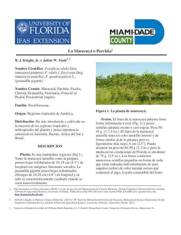 La Maracuyá o Parchita1 R. J. Knight, Jr. y Julian W. Sauls2, 3 Nombre Científico: Passiflora edulis Sims (maracuyá púrpur...