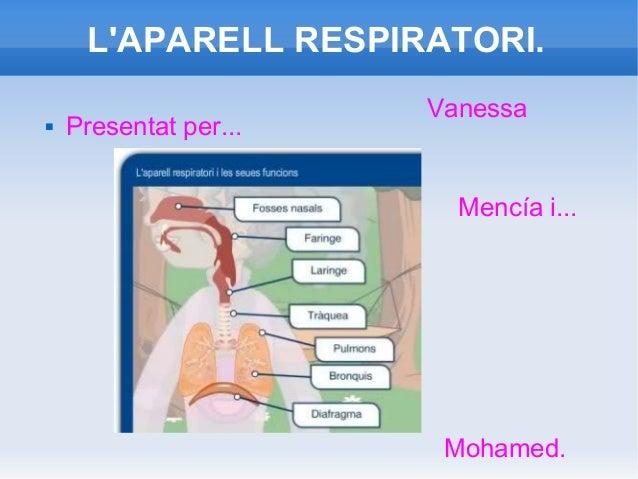 L'APARELL RESPIRATORI.   Presentat per...  Vanessa  Mencía i...  Mohamed.