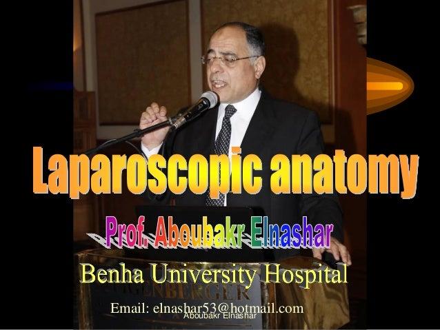 Laparoscopic  anatomy