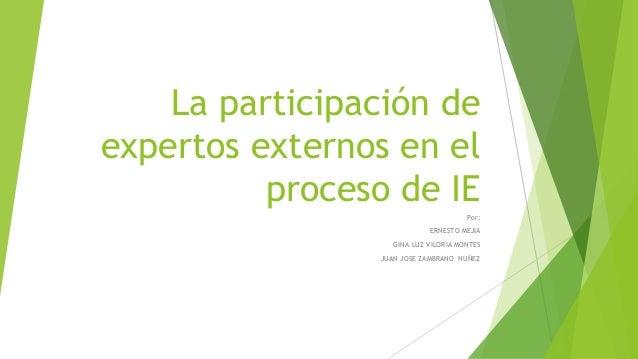 La participación de expertos externos en el proceso de IE Por: ERNESTO MEJIA GINA LUZ VILORIA MONTES JUAN JOSE ZAMBRANO NU...