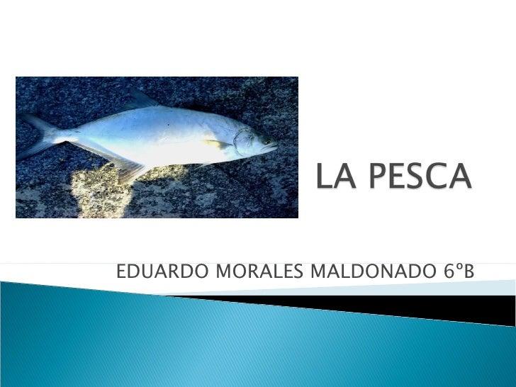 La pesca.eduardo morales