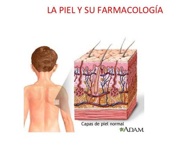 La piel y su farmacología