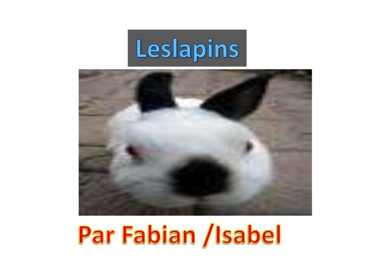 Les enemies du lapin sont les les fermiers, les  chasseurs, les renards, les ours et les loups.