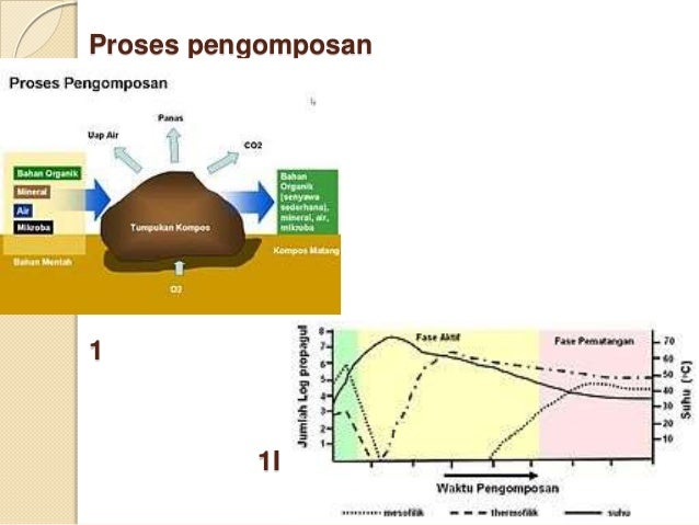 Pengaruh komposisi kompos organik terhadap pertumbuhan tanaman kedelai