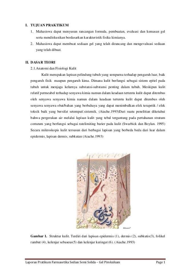 Laporan Pratikum Farmasetika Sedian Semi Solida – Gel Piroksikam Page 1 I. TUJUAN PRAKTIKUM 1. Mahasiswa dapat menyusun ra...