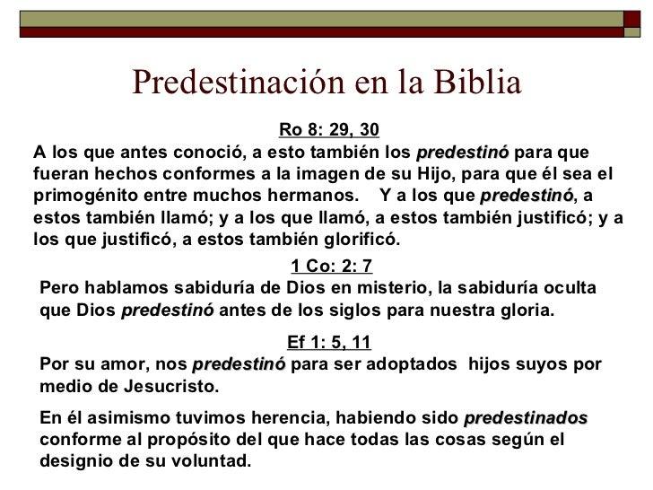 Resultado de imagen para predestinacion biblia libertad
