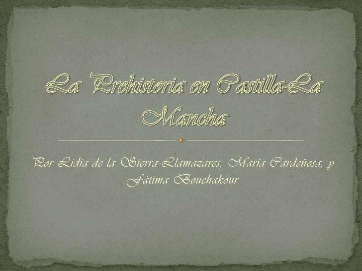 Por Lidia de la Sierra-Llamazares, María Cardeñosa, y                Fátima Bouchakour