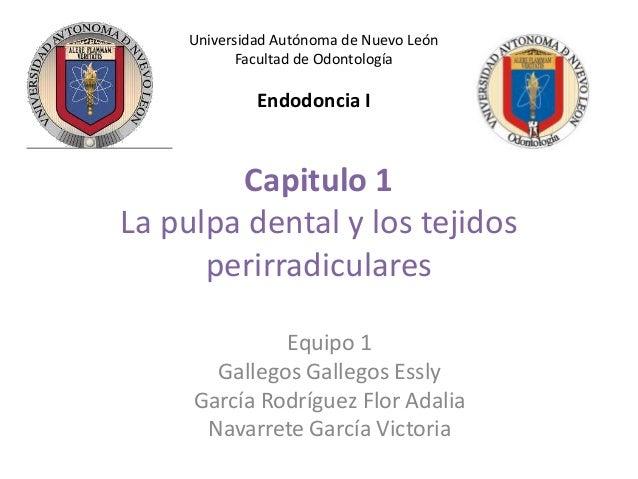 Universidad Autónoma de Nuevo León Facultad de Odontología  Endodoncia I  Capitulo 1 La pulpa dental y los tejidos perirra...