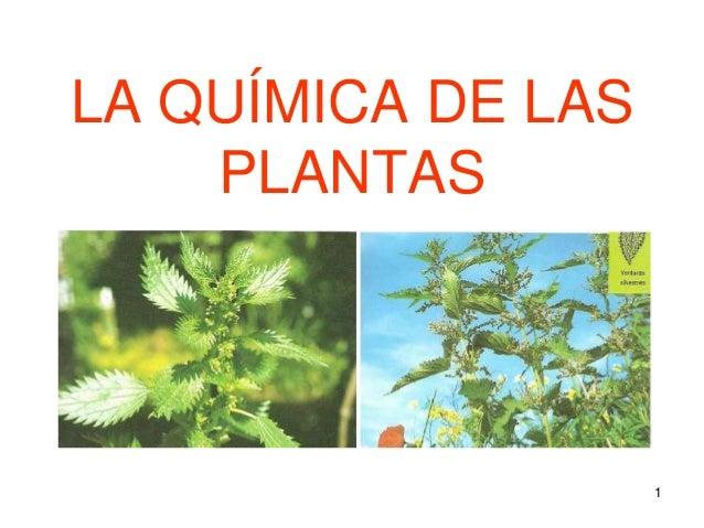 1 LA QUÍMICA DE LAS PLANTAS