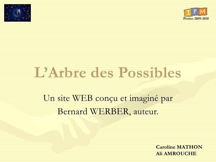 L'Arbre des Possibles Un site WEB conçu et imaginé par Bernard WERBER, auteur. Caroline MATHON Ali AMROUCHE Promo 2009-2010