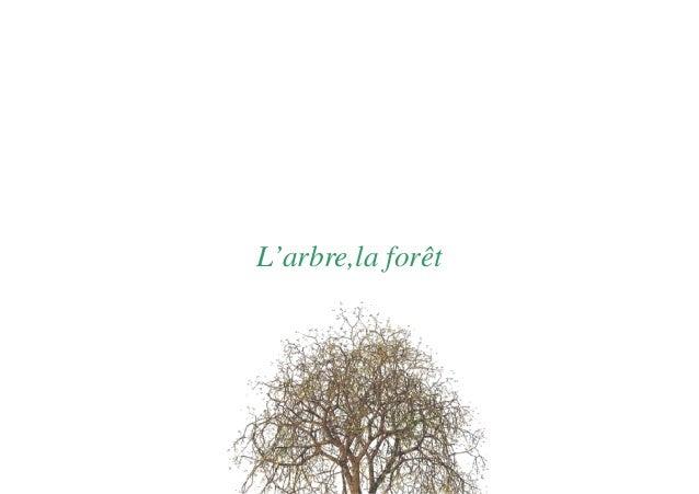 L'arbre,la forêt