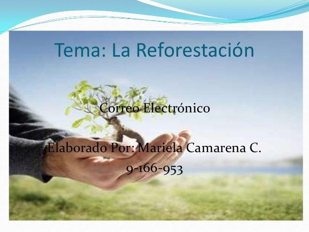 Correo Electrónico Elaborado Por: Mariela Camarena C. 9-166-953 Tema: La Reforestación
