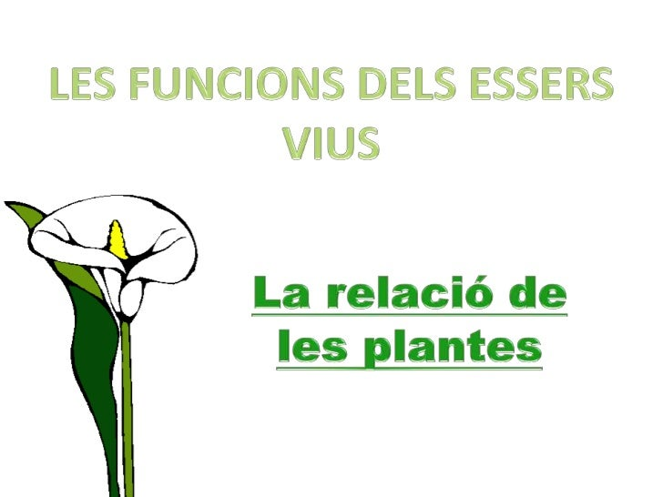 http://es.slideshare.net/meryvilardi/la-relaci-de-les-plantes