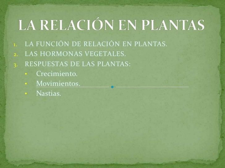 La relaci n en plantas for Funcion de las plantas ornamentales
