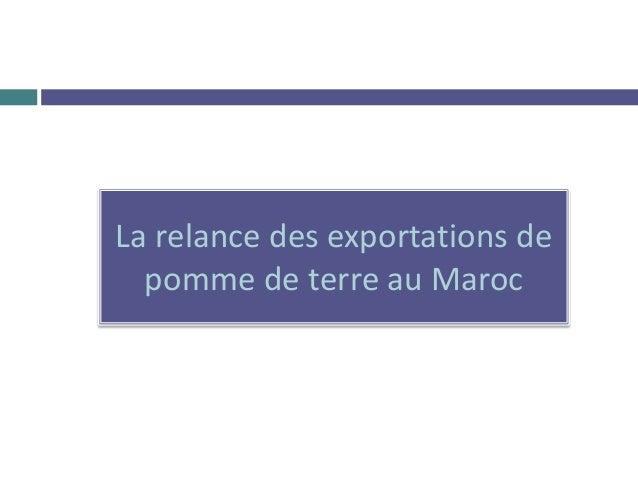 La relance des exportations de pomme de terre au Maroc