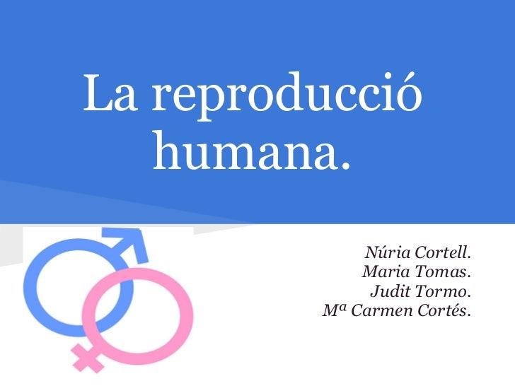 La reproducció   humana.             Núria Cortell.             Maria Tomas.              Judit Tormo.         Mª Carmen C...