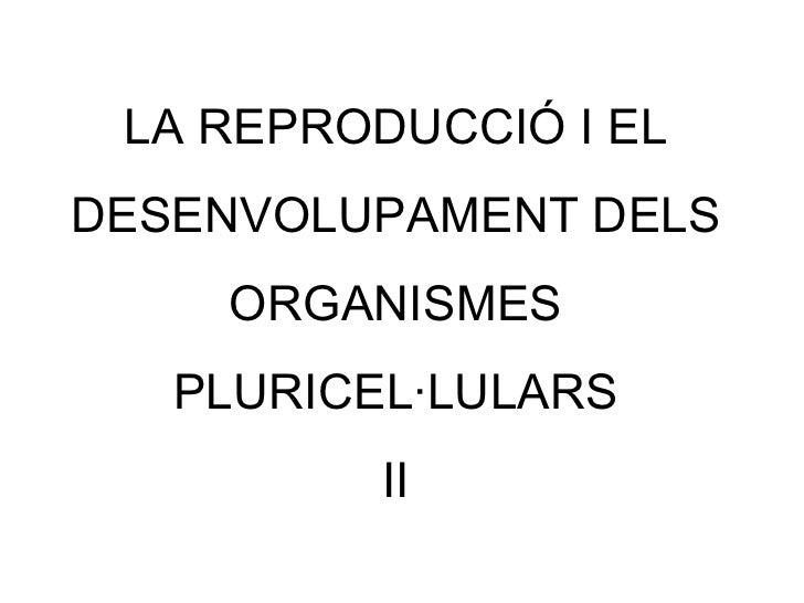 LA REPRODUCCIÓ I EL DESENVOLUPAMENT DELS ORGANISMES PLURICEL·LULARS II