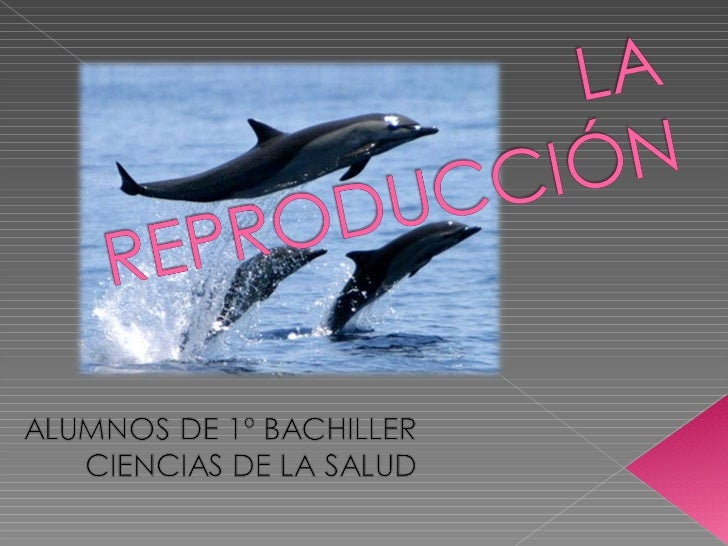 La reproducción97