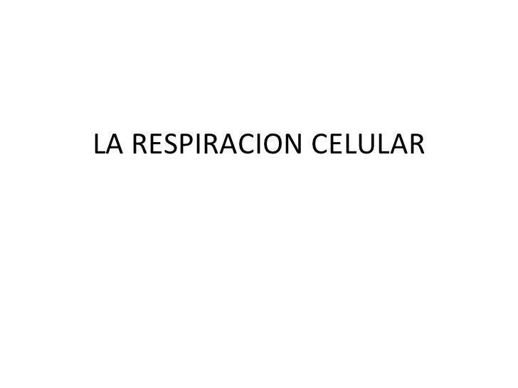 La respiracion celular
