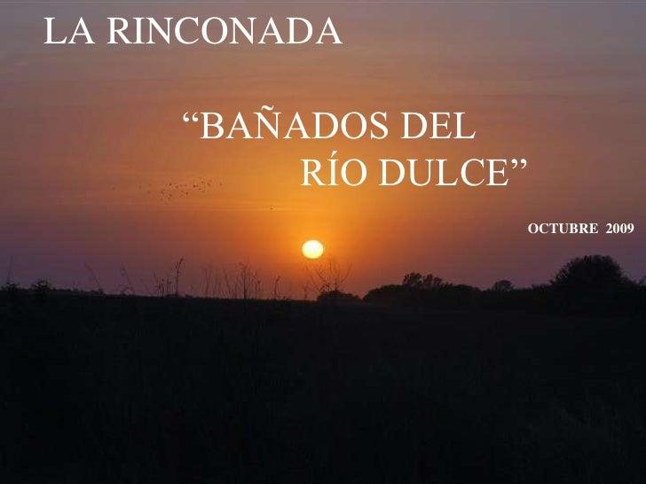 """LA RINCONADA              """"BAÑADOS DEL                           RÍO DULCE""""OCTUBRE  2009<br />"""