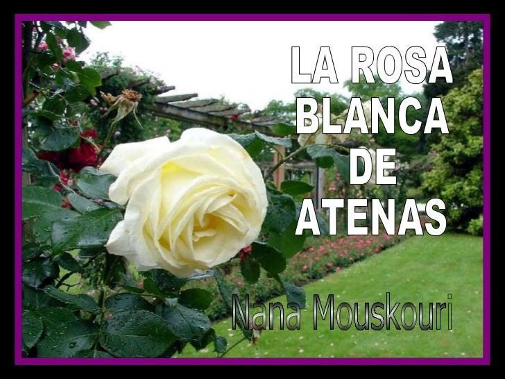 LA ROSA BLANCA DE  ATENAS Nana Mouskouri