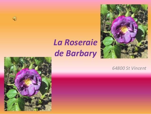 La Roseraie de Barbary 64800 St Vincent