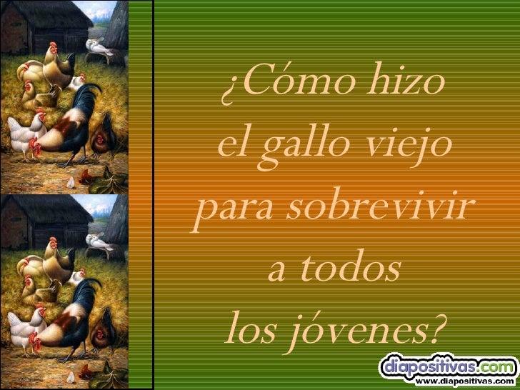 Las Canas