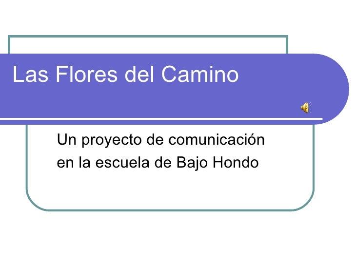 Las Flores del Camino Un proyecto de comunicación  en la escuela de Bajo Hondo