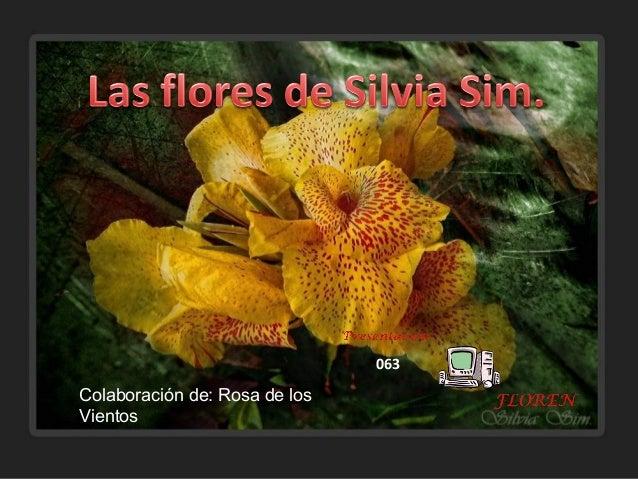 Colaboración de: Rosa de los Vientos 063