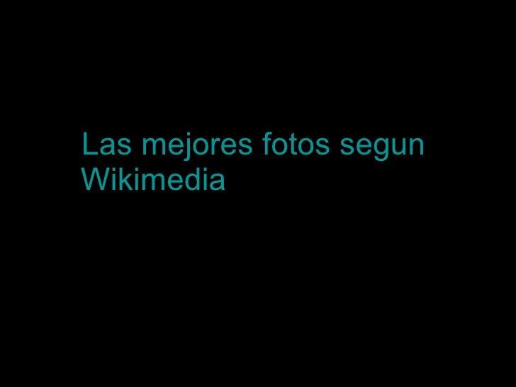 Las mejores fotos  segun   Wikimedia  del año 2007